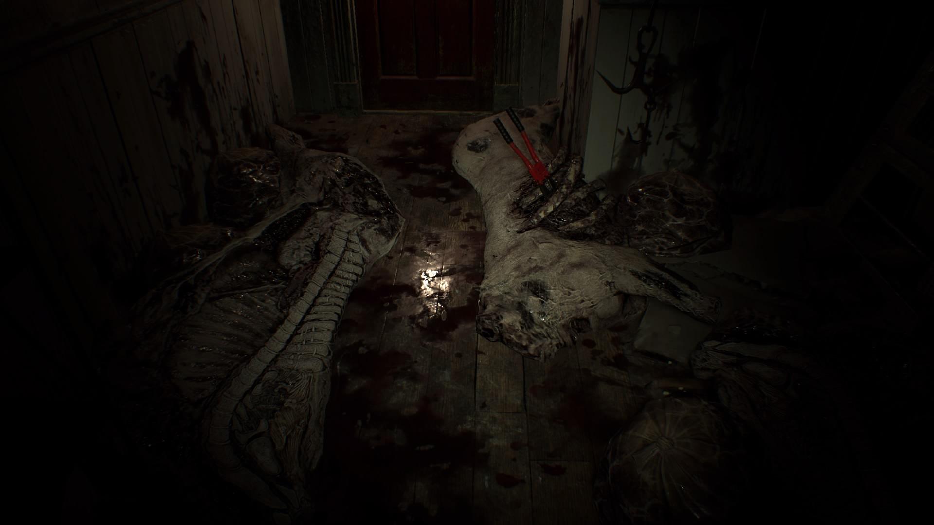Resident Evil 7 Teaser: Beginning Hour_20160615011218
