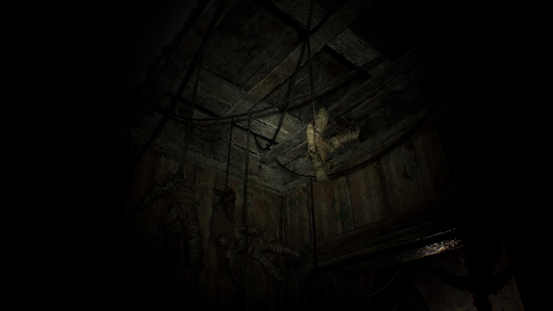 Resident Evil 7 Teaser: Beginning Hour_20160615005548